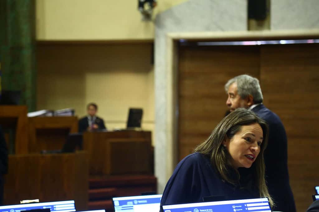 "Diputada Joanna Pérez y reforma tributaria: ""perjudica a las regiones"""