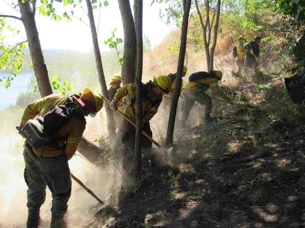 Conaf y vecinos de Laja realizaron trabajos para reducir riesgos de incendios forestales