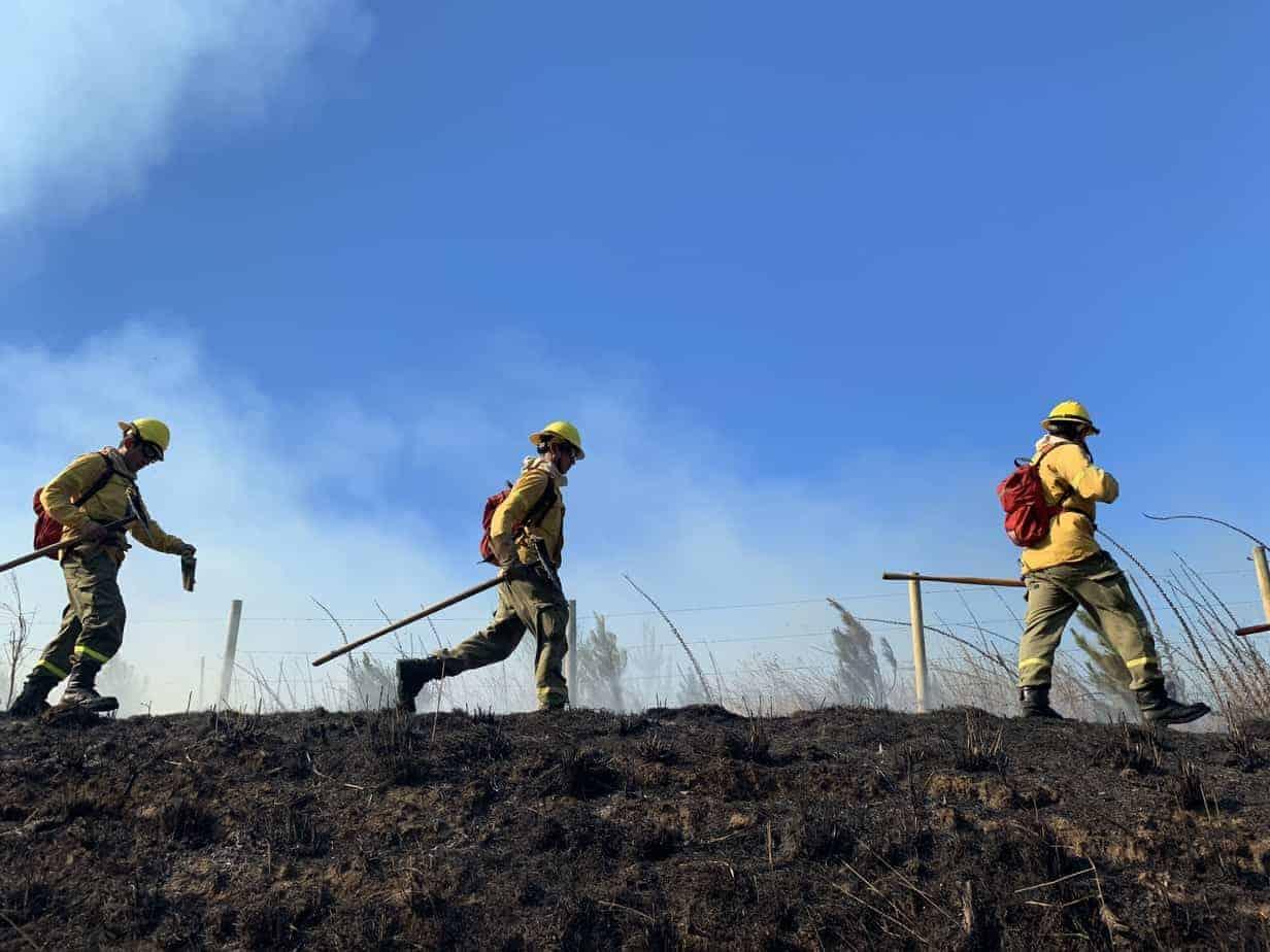 Incendio forestal es controlado y destrucción supera las 40 hectáreas