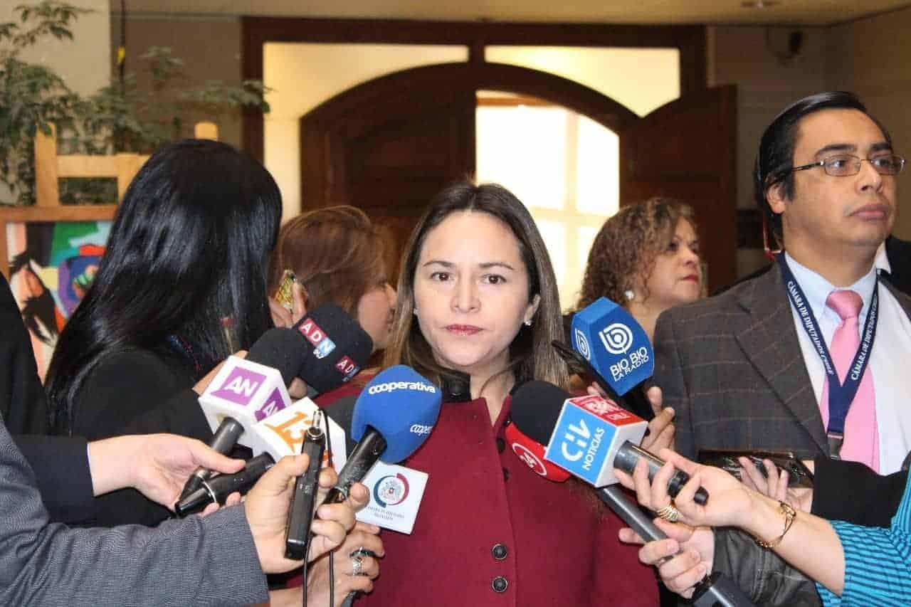 Diputada Joanna Pérez acusa al gobierno de querer paralizar tramitación de proyecto que repone voto obligatorio