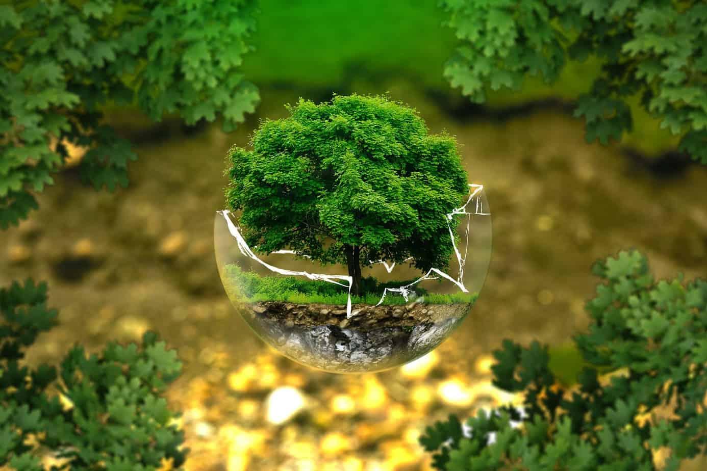 Nación Verde apoyará con hasta 5 millones proyectos en pro del medio ambiente