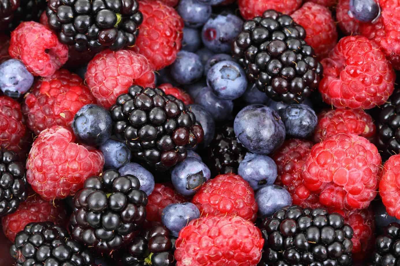 """Invitan a productores del PTI Berries Biobío a participar en proyecto tecnológico """"Smart Fruit"""""""