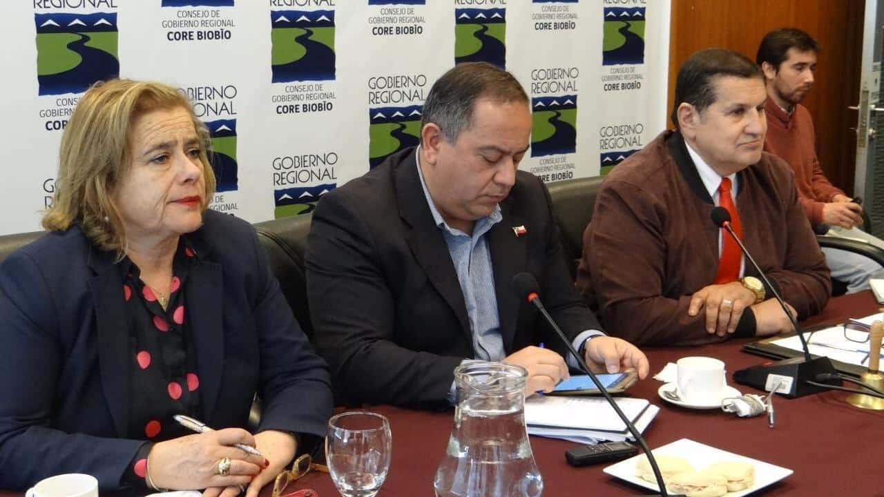 Consejo Regional del Biobío se suma al rechazo del proyecto de Carretera Hídrica