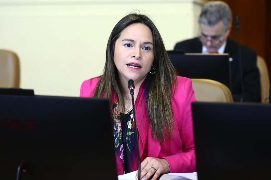 Diputada Joanna Pérez insiste en volver al voto obligatorio inclusive para el plesbicito 2020