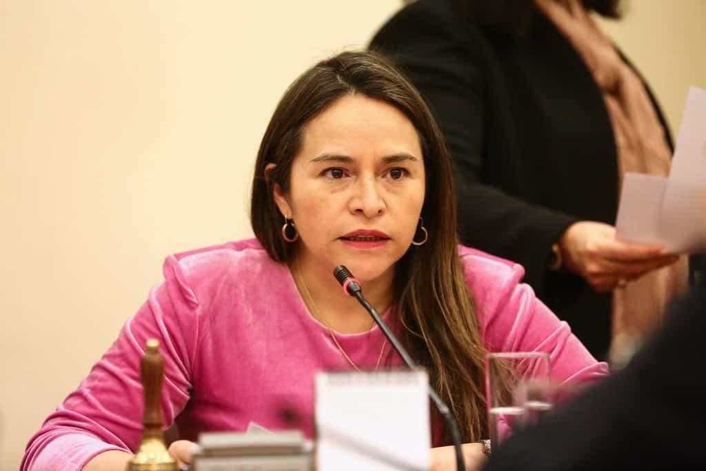 Joanna Pérez acusa maniobras del Gobierno y la UDI para frenar voto obligatorio