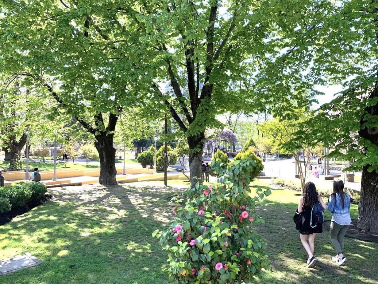 63,8% de los angelinos vive a menos de 400 metros de una plaza o parque