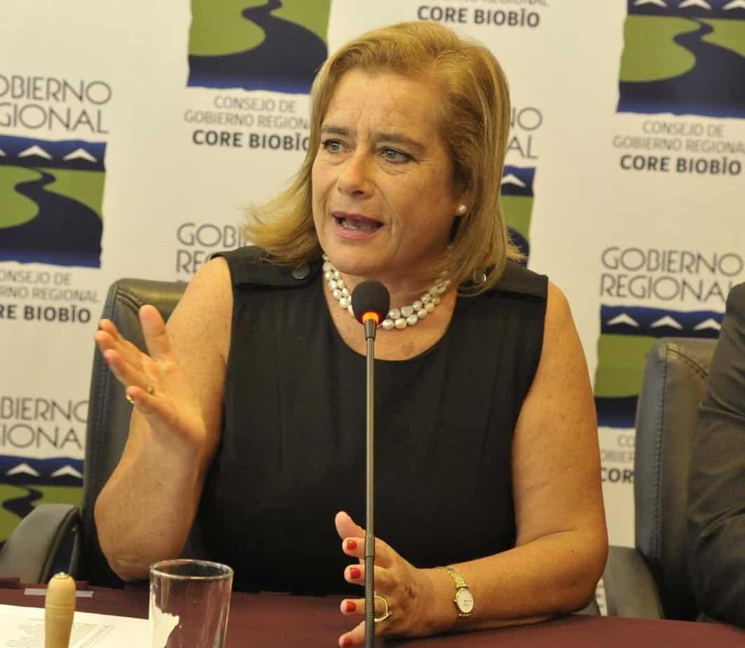 Presidenta del Core tras dichos del gobernador por el proyecto del estadio: «generamos conflictos innecesarios»