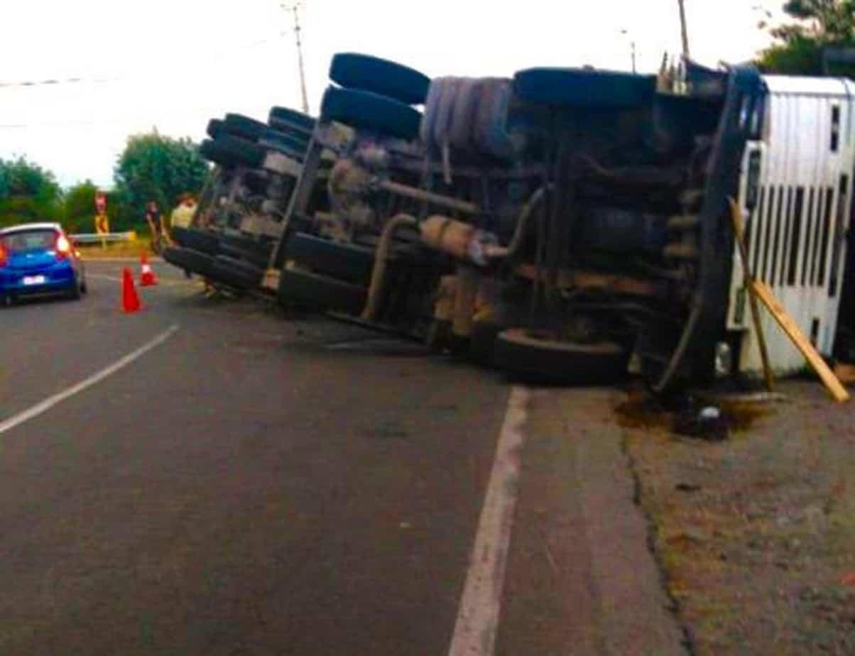 Camión maderero vuelca camino a Antuco: hay derrame de combustible