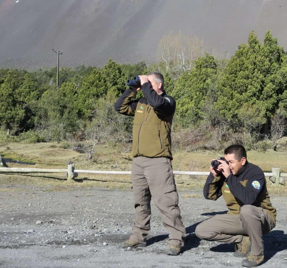 Con cámaras trampa se obtendrán datos del huemul en Laguna del Laja