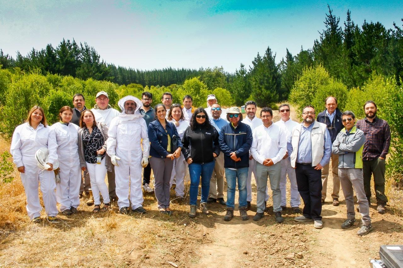 Firman alianza para investigar efecto de reforestación nativa en la producción de miel