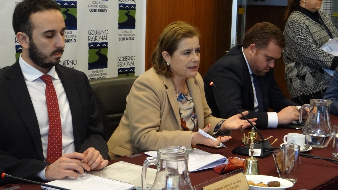 Flor Weisse la solitaria candidata que avanza por la Gobernación Regional