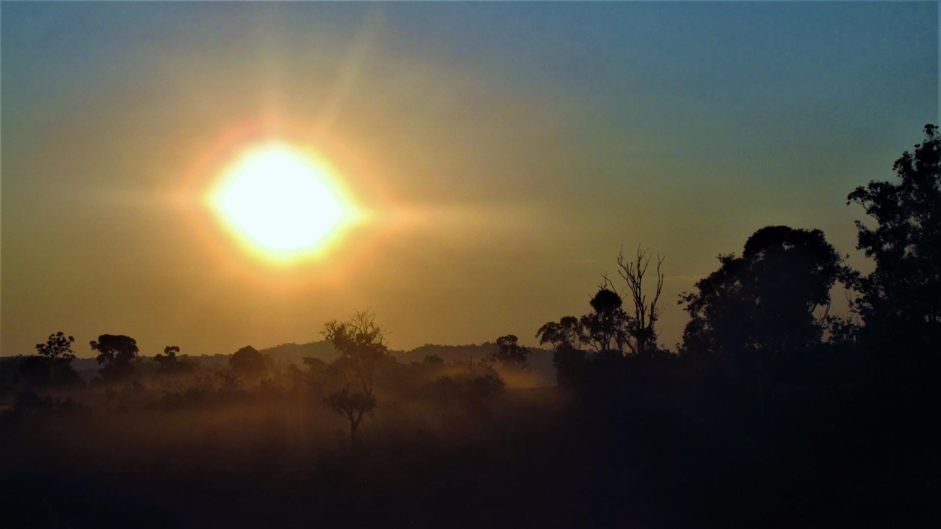 Gobierno plantea preocupación por evento de altas temperaturas para el Biobío este fin de semana