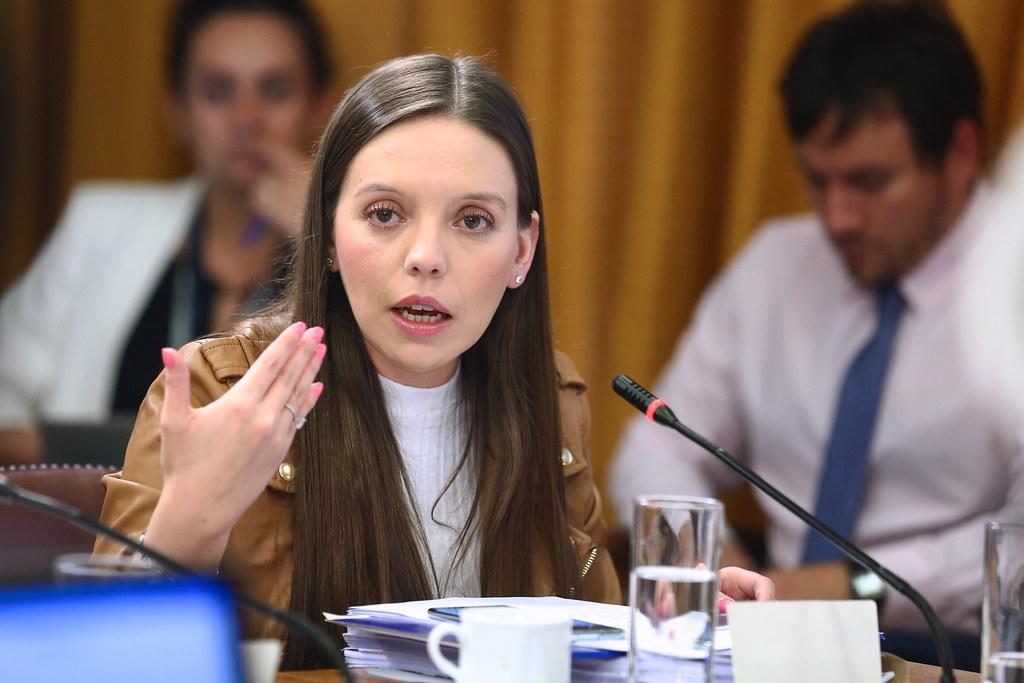 Camila Flores y Viña 2020: «Se ha utilizado mañosamente para hacer propaganda política»