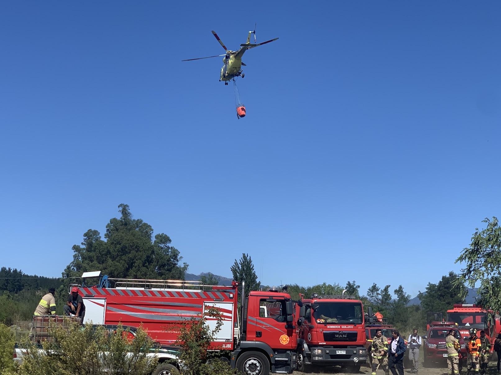 Mega incendio en Tucapel deja 144 hectáreas destruidas