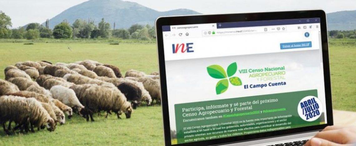 Un millón de sueldo: Buscan trabajadores para Censo Agrícola en todo el país