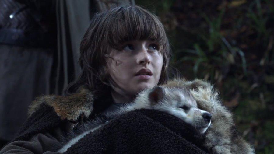 Muere el cachorro que formó parte de Game Of Thrones
