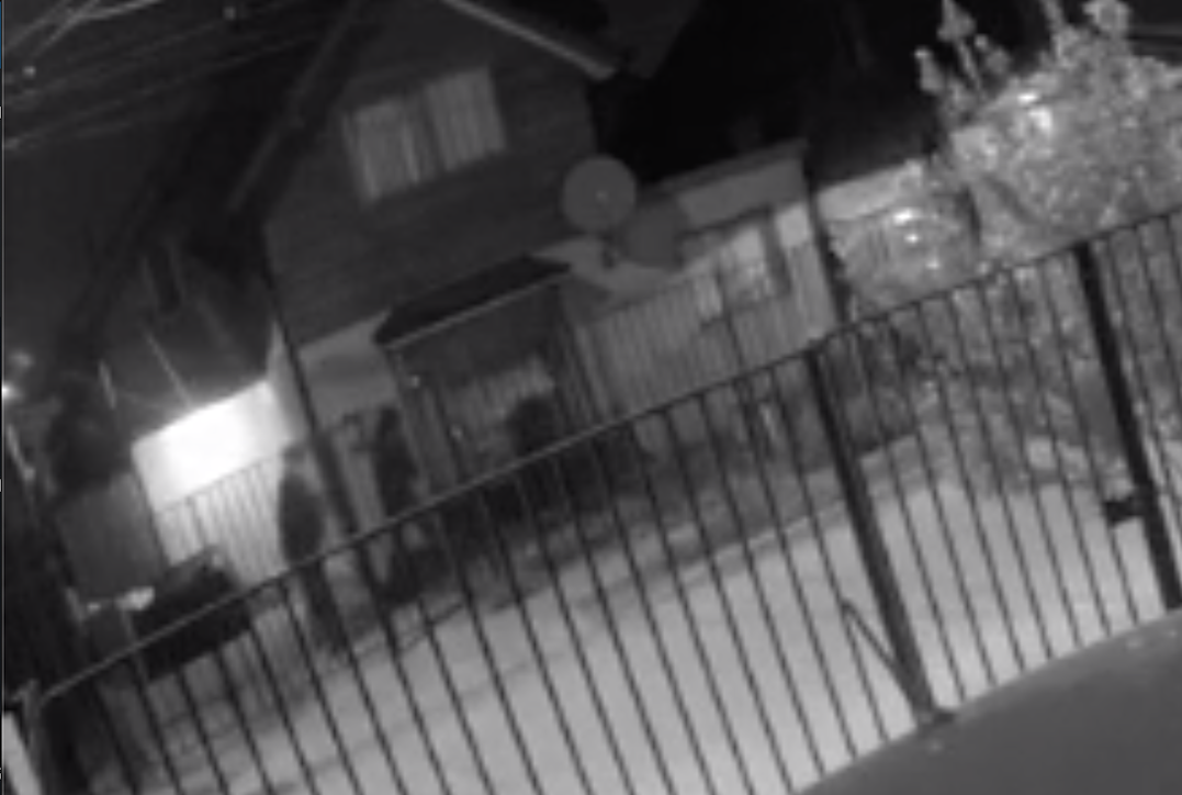 Impactante video: Familia vivió brutal ataque de delincuentes en Los Ángeles