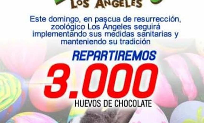 Autoridad sanitaria suspende actividad de «Pascua» en el Zoológico de Los Ángeles