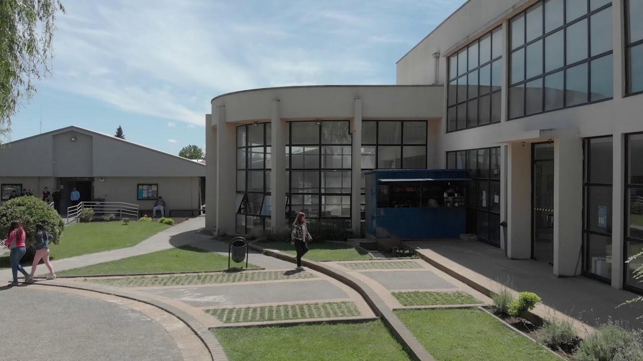Oferta Laboral: Virginio Gómez busca facilitadores para todas sus sedes
