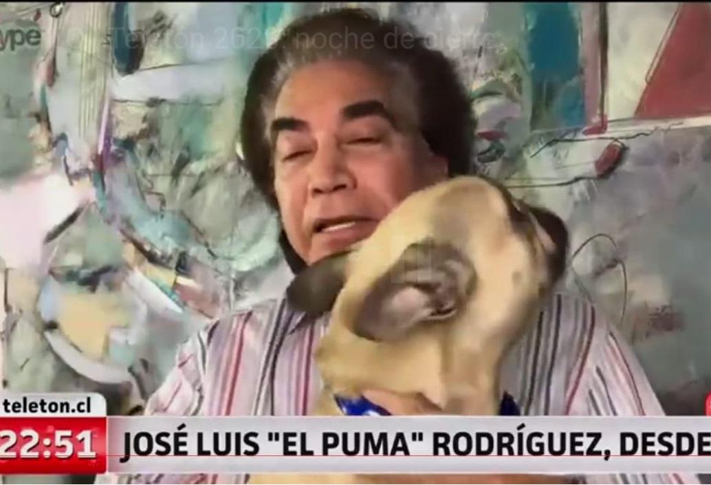Con perrito incluido: el Puma recordó su trasplante de pulmones