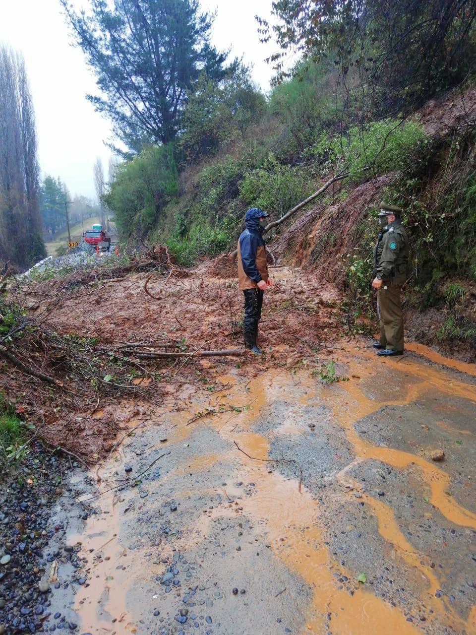 Derrumbe en cerro corta ruta en Nacimiento