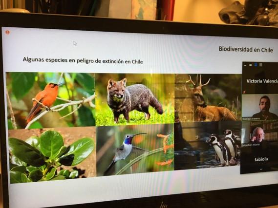 """Se inició primer ciclo de """"Diálogos"""": instancia virtual aborda temas de educación ambiental y biodiversidad"""