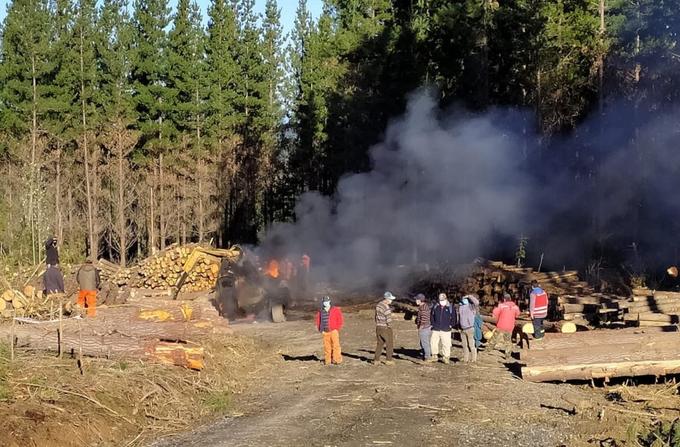 Contulmo: investigan nuevo ataque incendiario en predio de Mininco