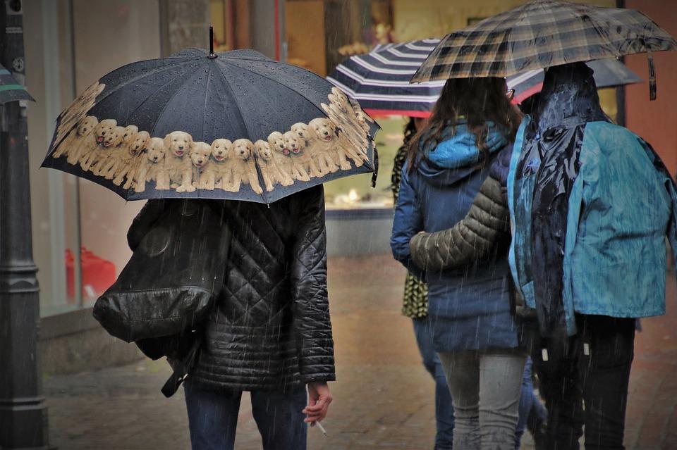Declaran Alerta Temprana Preventiva por lluvias y viento en región del Bío Bío