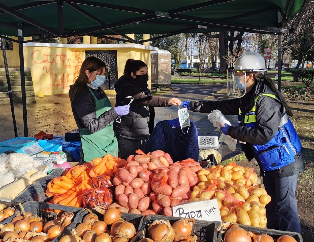 Fiscalizaciones de seguridad alimentaria en el Biobío dejan 103 sumarios