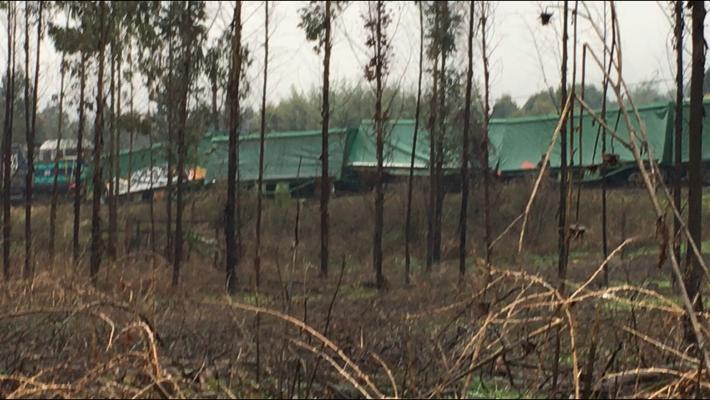 Tren de carga fue atacado a tiros y terminó descarrilado en Ercilla