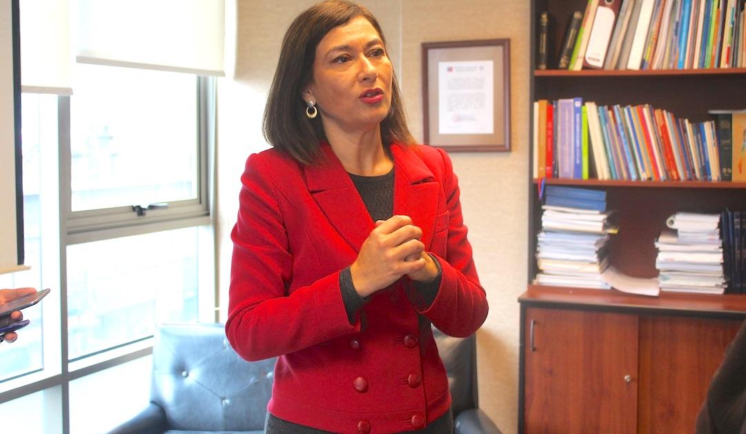 Polémica Seremi de Salud de la Araucanía renunció al cargo