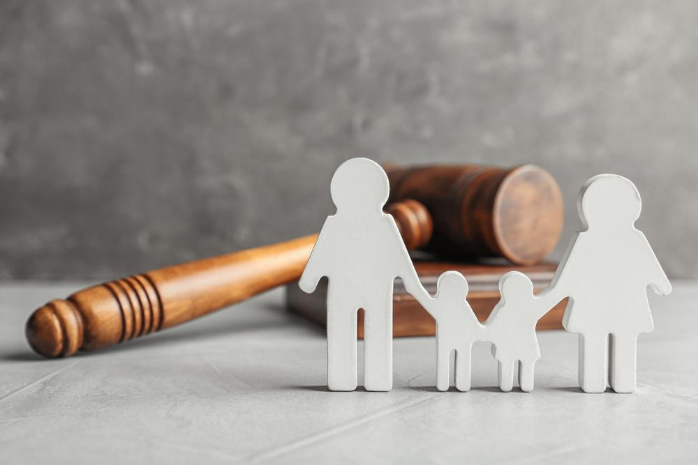 Habilitan portal para retener 10% de AFP a padres deudores de pensión