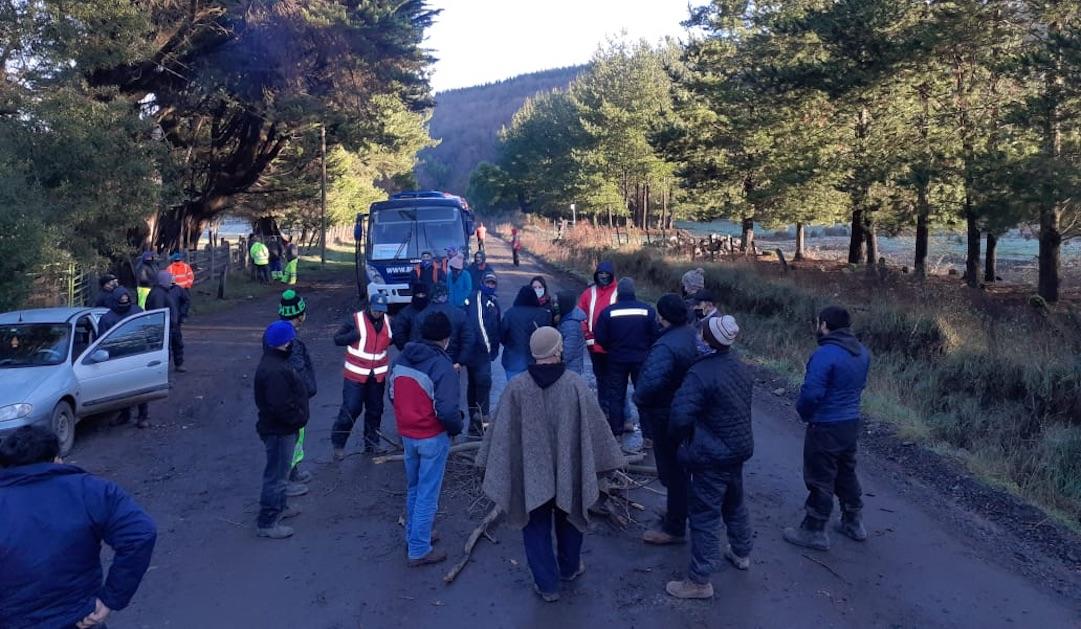 Vecinos de Quilleco se toman camino indignados por el paso de camiones forestales
