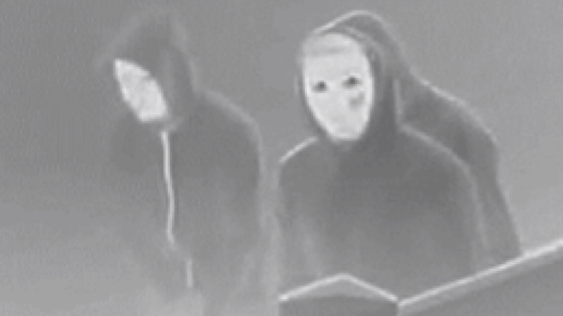 Buscan a los individuos que mataron a una familia emulando «La Purga»