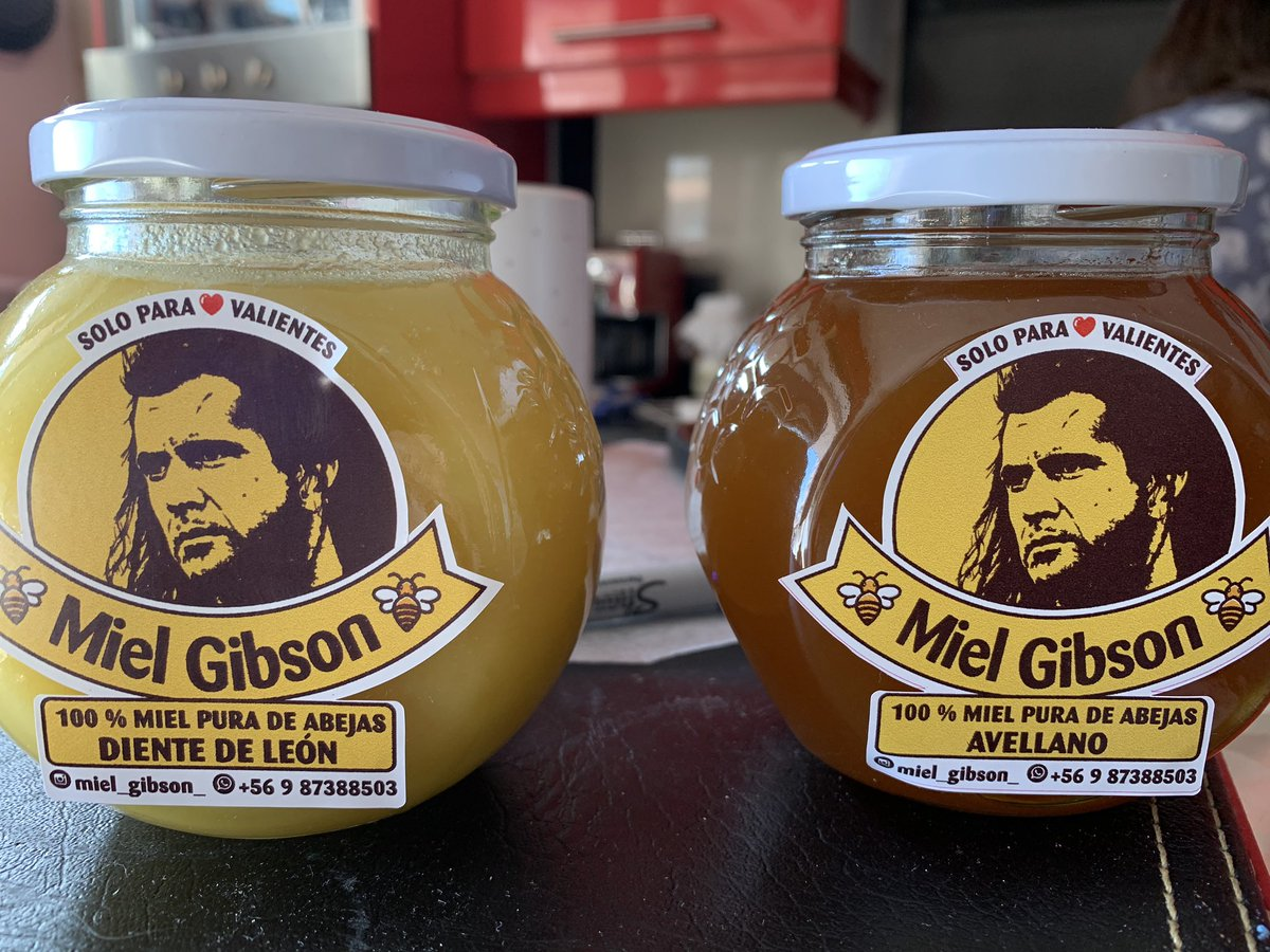 Mel Gibson amenaza con demanda a emprendedor Chileno por uso de imagen