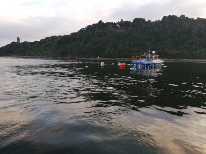 Pontón salmonero se hunde con 20 toneladas de alimento en Puerto Montt