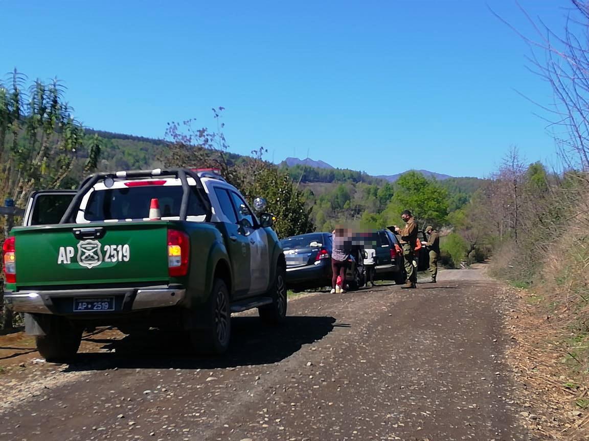 Intensifican controles en Antuco por inicio de «la guerra del digüeñe»