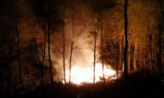 Ataque incendiario en Contulmo deja una cabaña destruida y dos con diversos daños