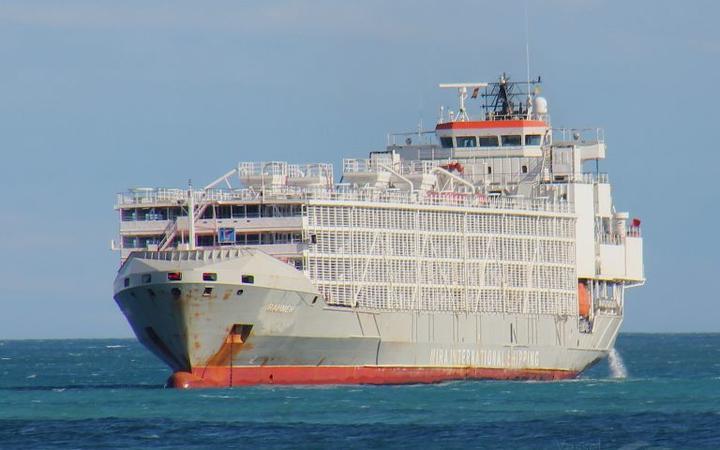 Buque se hunde con 43 tripulantes y 5.800 vacas en las costas de Japón