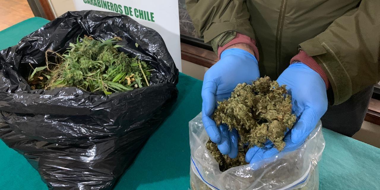 Detienen a sujeto con plantas y varios kilos de marihuana en Coronel