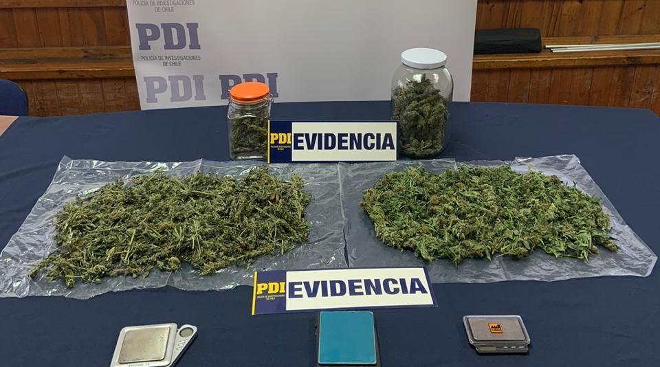 Médico chillanejo en arresto domiciliario por posesión de medio kg de marihuana