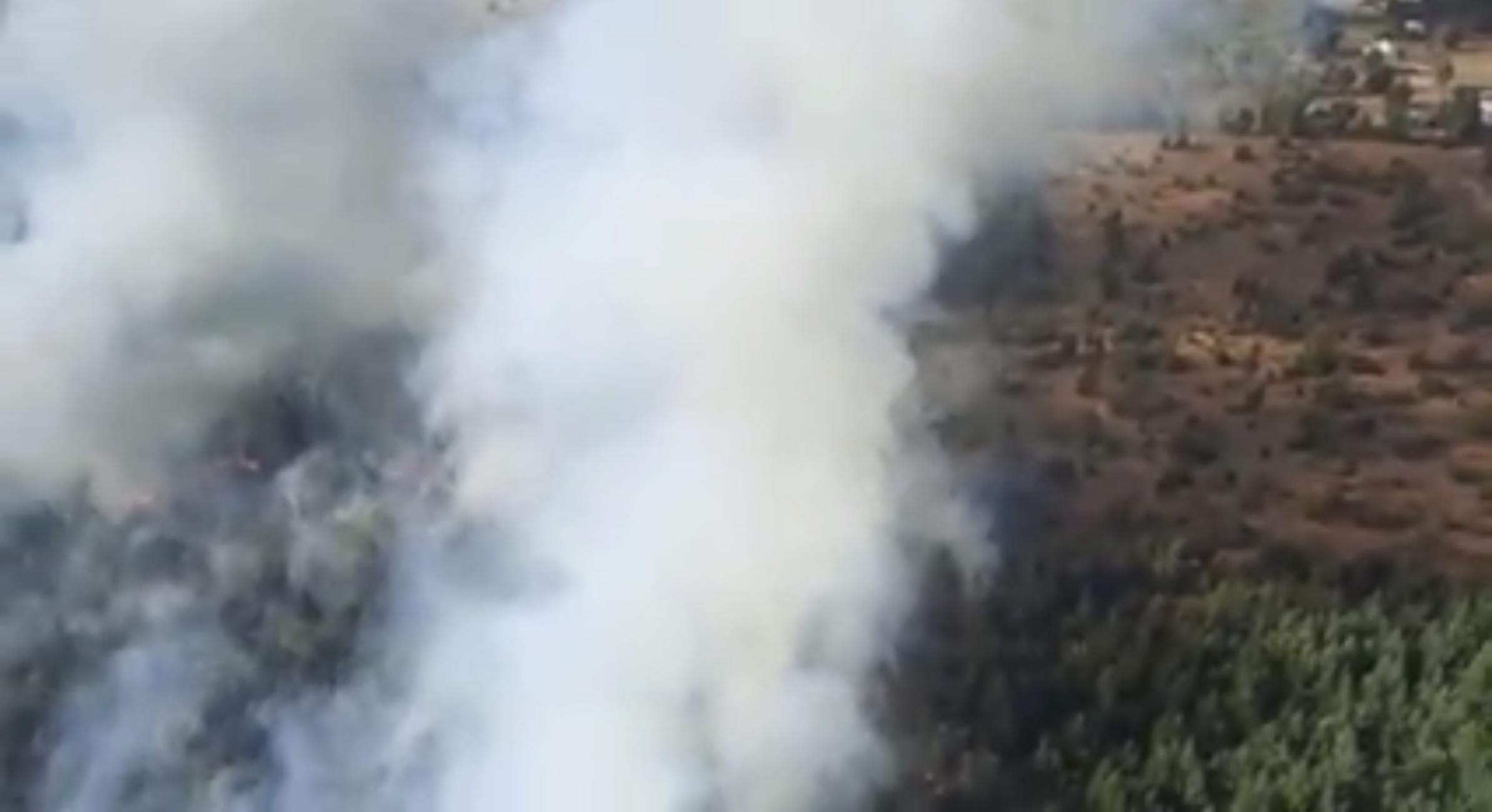 Los Ángeles: Incendio de Chacayal Sur ha destruido más de 19 hectáreas