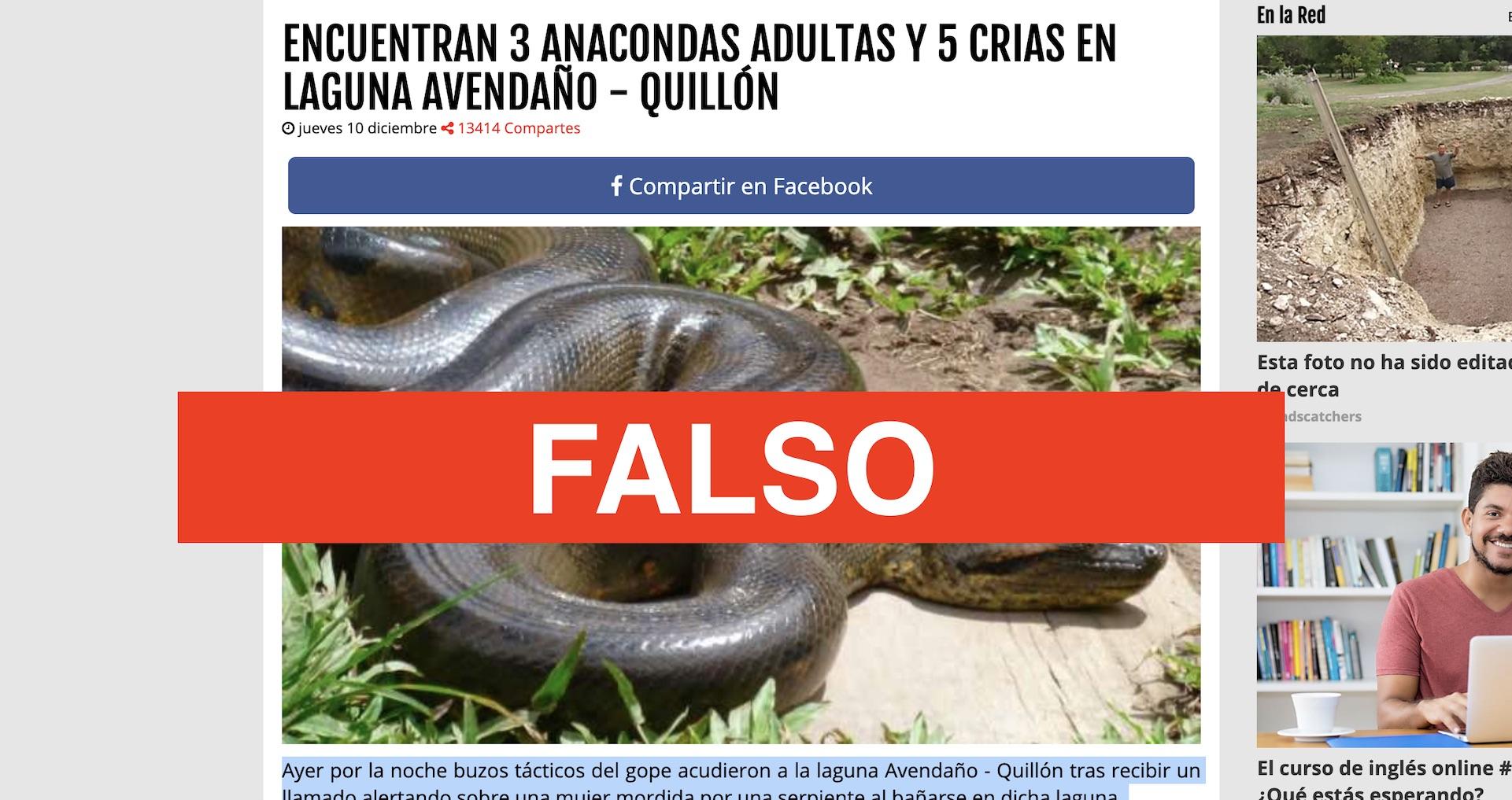 Fake News: Viralizan supuestas anacondas encontradas en el Biobío