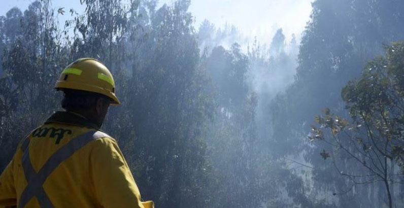 Nacimiento y Santa Juana pasan a alerta amarilla por incendio forestal