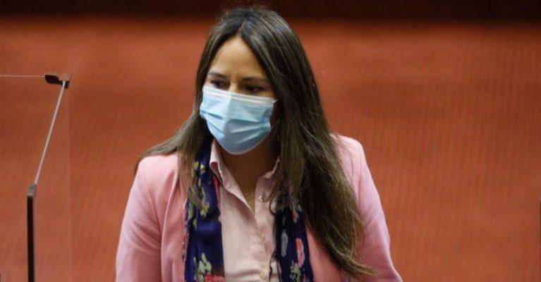 Diputada de la Región del Biobío sufrió intento de encerrona en Santiago