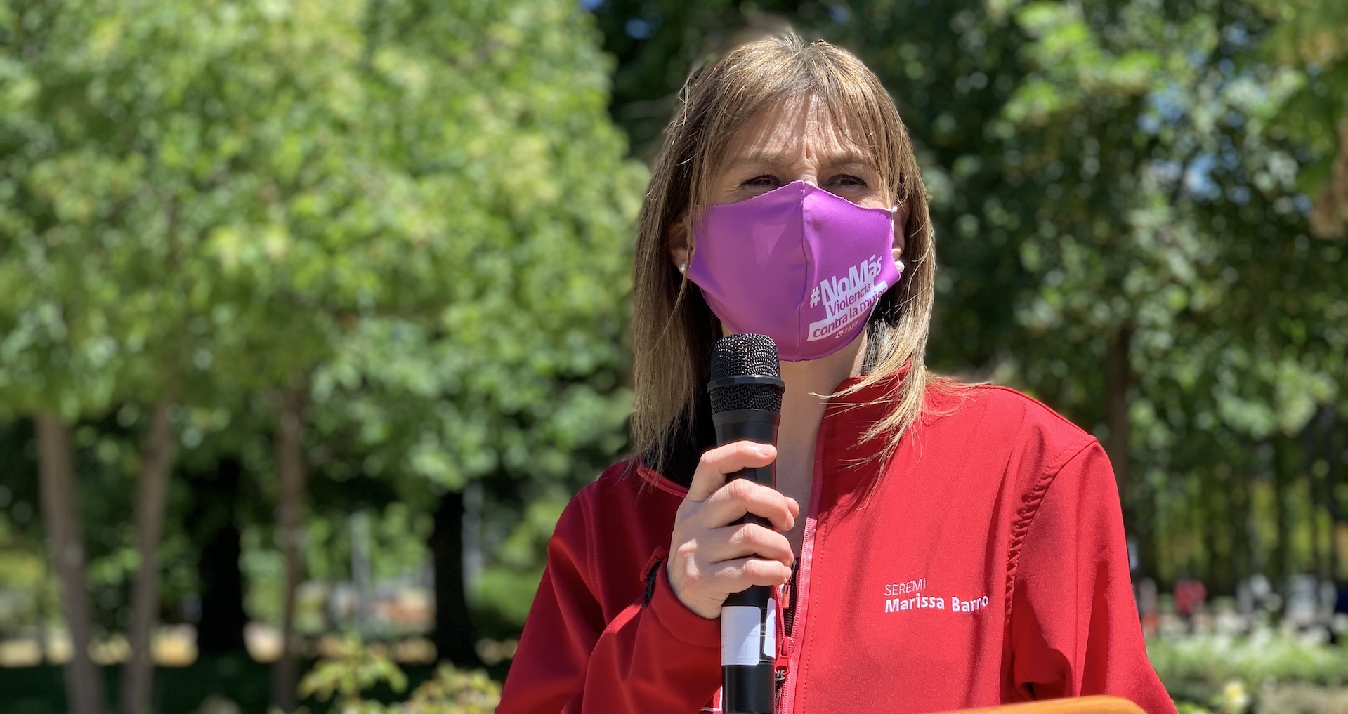 Los Ángeles y Cabrero lideran consultas en Biobío por violencia contra la mujer