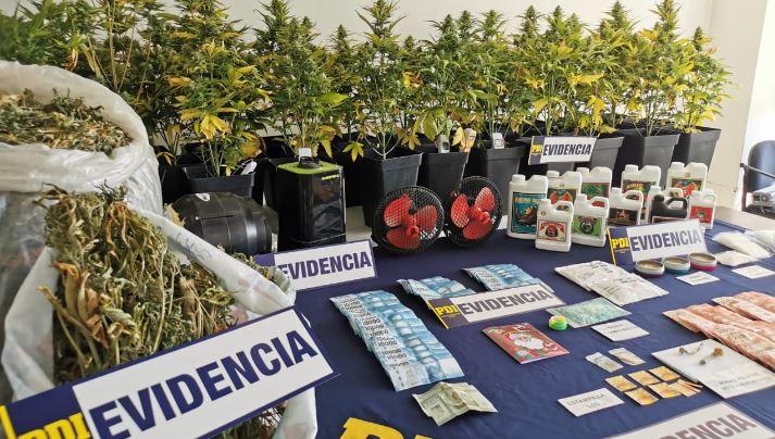 Sujeto vendía drogas sintéticas en tarjetas de navidad: avalúo supera los 200 millones