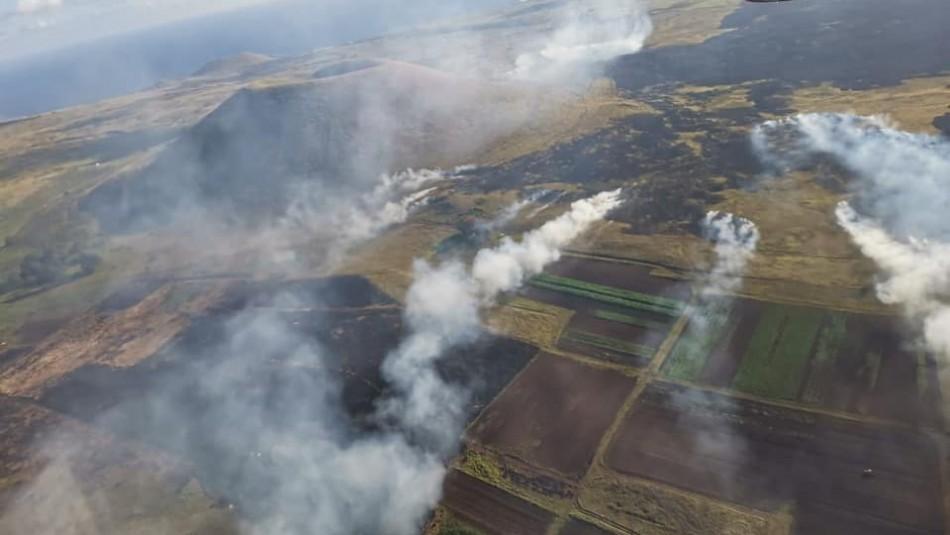 600 hectáreas consumidas por incendio en Rapa Nui: posible daño arqueológico