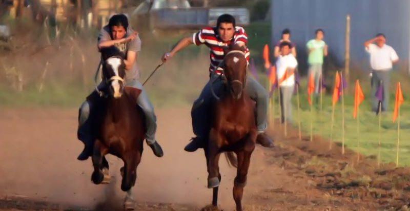 Carrera de caballos en pandemia: más de 90 asistentes y cuatro detenidos