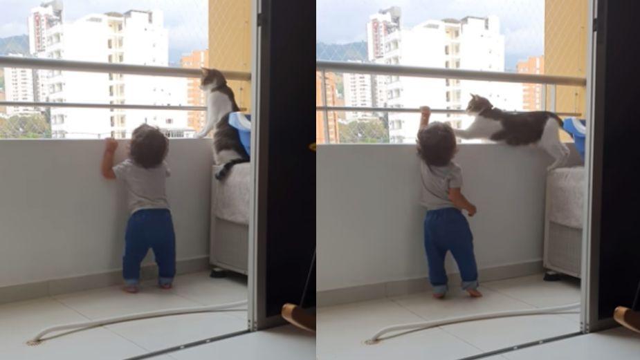 Gato cuidando que un niño no caiga del balcón se hace viral